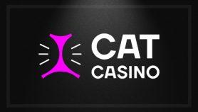 CatCasino